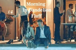 morningindandelionfluff